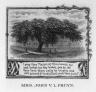 Pruyn, Mrs. John V.L.