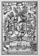Vogel, Elfriede