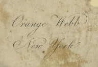 Orange Webb
